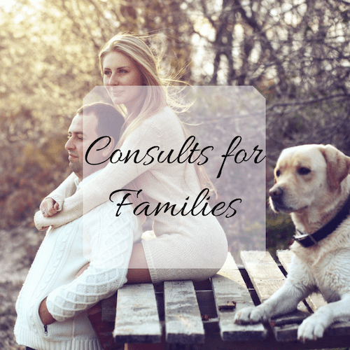 Family Consulting 1